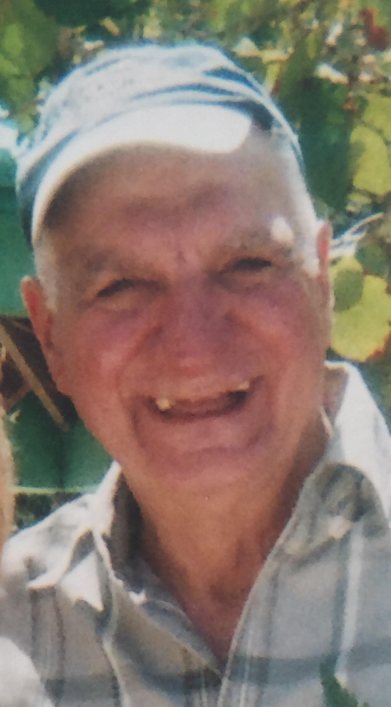 obituaries vertuccio smith funeral home demarco michael